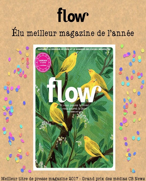 Visuel-article-prix-Flow-2