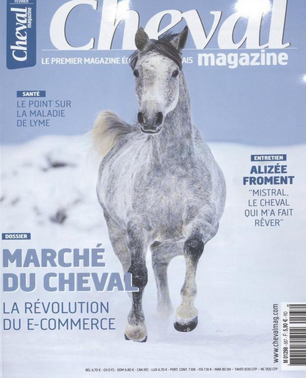 Cheval Magazine s'intéresse au commerce